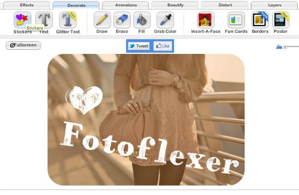 fotoflex